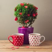Cups and tree plant with heart shapes — Foto de Stock