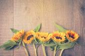 Sunflowers on wooden board — Stock Photo