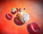 Red Blood Cells and Cholesterol — Stock Photo