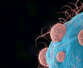 Microscopic virus — Stock Photo