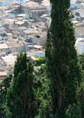 Spainish Village with Trees — Stock Photo