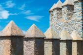 Castle Ramparts (1) — Stock Photo