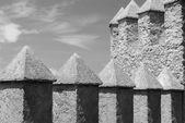 Castle Ramparts (2) — Stock Photo
