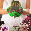 Woman caring about flowers — Stock Photo #72051999