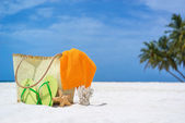 Summer beach bag with starfish,towel,sung lasses and flip flops on sandy beach — Stock Photo