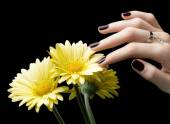 Manicured Nail with Black Matte Nail Polish. Manicure with Dark — Stock Photo