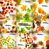Set of autumn backgrounds — Stock Vector
