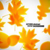 Осенний фон — Cтоковый вектор