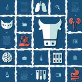 Veterinary flat infographic — Stock Vector