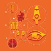 Medicinsk platt infographic — Stockvektor