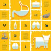 Veterinary flat infographic — Wektor stockowy