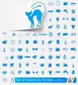 Veterinary stickers — Vetorial Stock