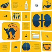 Veterinary flat infographic — Vetorial Stock