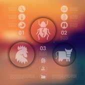 Veterinary infographic — Wektor stockowy