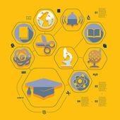 Flat education infographic — Stock vektor