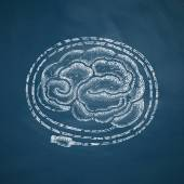 Brain icon on chalkboard — Stock Vector