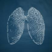 Lung icon on chalkboard — Stock Vector