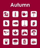 Set of autumn simple icons — Stock Vector