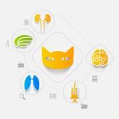 Veterinary sticker infographic — Stock Vector