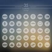 Set of luxury icons — Stock Vector
