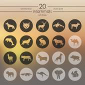Set of mammals icons — Stock Vector