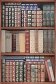 Old library,  cover books on shelves  — Foto Stock