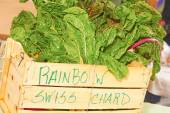 Rainbow Swiss Chard — Stock Photo