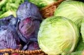 Purple And Ordinary Cabbages — Stock Photo