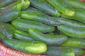Cucumbers For Sale — Stock Photo