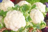Fresh cauliflower cabbages — Stock Photo