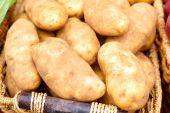 Batatas cruas para venda — Foto Stock