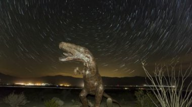 Prehistoric dinosaur with startrails — Stock Video