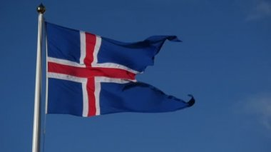 Slowmotion Icelandic flag — Stock Video