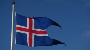 Slowmotion lowering Icelandic flag — Stock Video