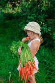 Girl gnaws carrot with a bunch of carrots — Stock Photo