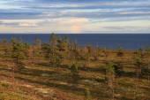 вечер на побережье белого моря — Стоковое фото