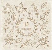 Sketch leaf collection. — Vector de stock