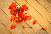 Orange flowers on old wooden table. — Stock Photo
