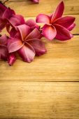 Red frangipani placed on a wooden floor. — Stock Photo