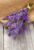 Lavender flowers in a basket with burlap on the wooden backgroun — Stock Photo