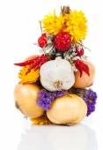 Braided bunch with onions, garlic and flowers, over white backgr — Stock Photo