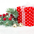 Christmas red gift with branch firtree, isolated over white — Stock Photo #55270941