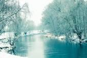 Small river in winter, with trees — Stock Photo