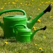 Two green watering can on a field of daisies. — Stock Photo #63979257
