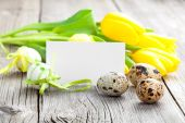 Quail eggs and Easter eggs on wooden background — Stockfoto