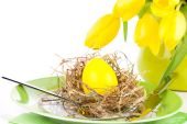 Easter place setting with tulip flower on white background — Stock Photo