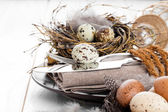 Table decoration on white wooden background with quail eggs  — Foto de Stock