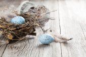 Bıldırcın yumurtası Beyaz ahşap zemin üzerinde — Stok fotoğraf