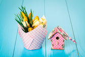 Yellow Spring Crocus and birdhouse on blue wooden background — Stock Photo