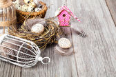 Easter decoration on wooden background with color egg and with b — Stock Photo
